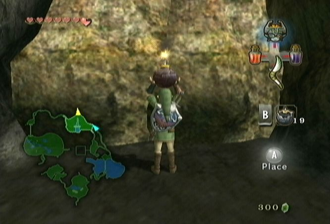 twilight princess how to be able to catch bugs