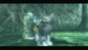 More Wolf Link howling.