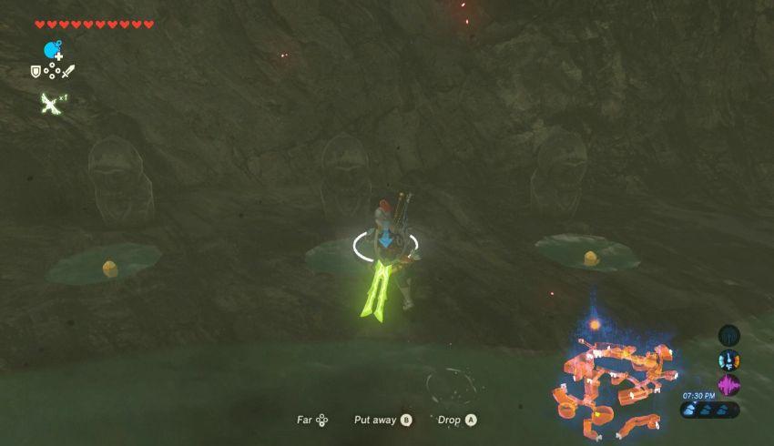 Hyrule Castle Korok Seed Locations - Zelda Dungeon
