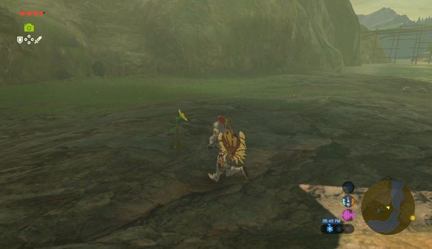 Ridgeland Korok Seed Locations Zelda Dungeon