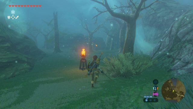 Breath Of The Wild Walkthrough The Master Sword Zelda Dungeon