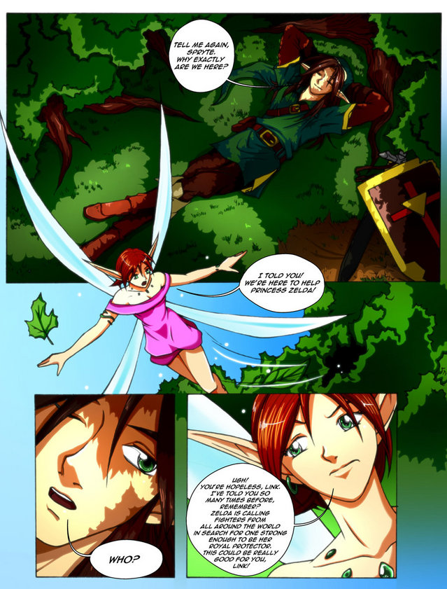 The Legend of Zelda Comic Chapter 1: Page 8