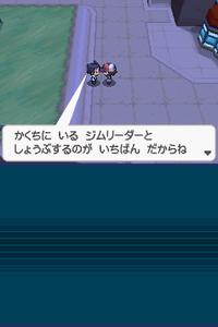 Pokémon Black and White Screenshot 001