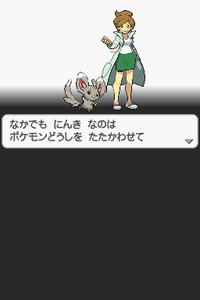 Pokémon Black and White Screenshot 002