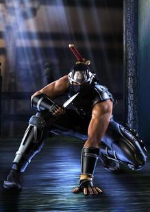NinjaGaiden (18).jpg