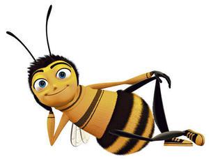 The Common Bee