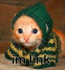 Link Cat