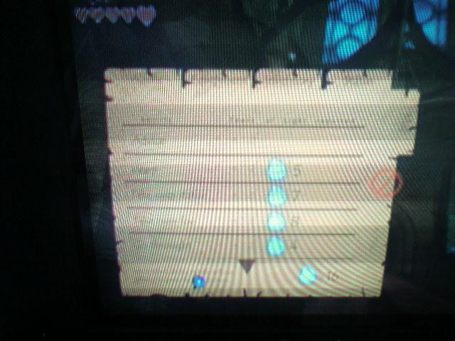 Zelda Wii Screen 5