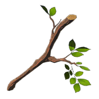 Tree Branch - HWAoC icon.png