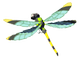 Electric-darner.png