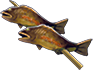 Fish-skewer.png