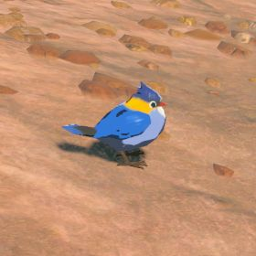 File:Blue-sparrow.jpg