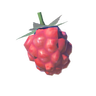 Wildberry.png