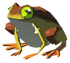 Tireless-frog.png
