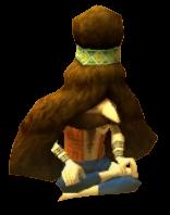 Carpet Merchant Zelda Dungeon Wiki