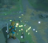 Hyrule Garrison Ruins Zelda Dungeon Wiki