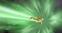 The Legend Of Zelda Ocarina Of Time Zelda Dungeon Wiki