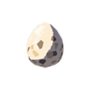 Bird Egg.png