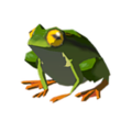 Hot-footed-frog.png