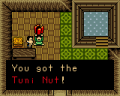 Cracked-Tuni-Nut.png