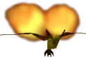 Fire Keese OoT.png