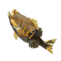 Roasted Bass.png