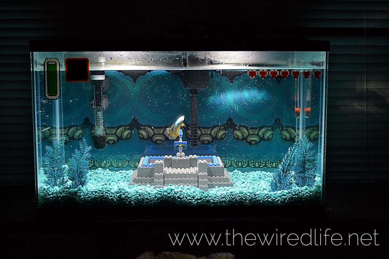 Aquarium fish tank game - 9kkfrst