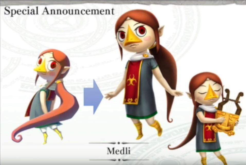 Gossip Stone What Do You Expect From The Upcoming Hyrule Warriors Dlc Zelda Dungeon