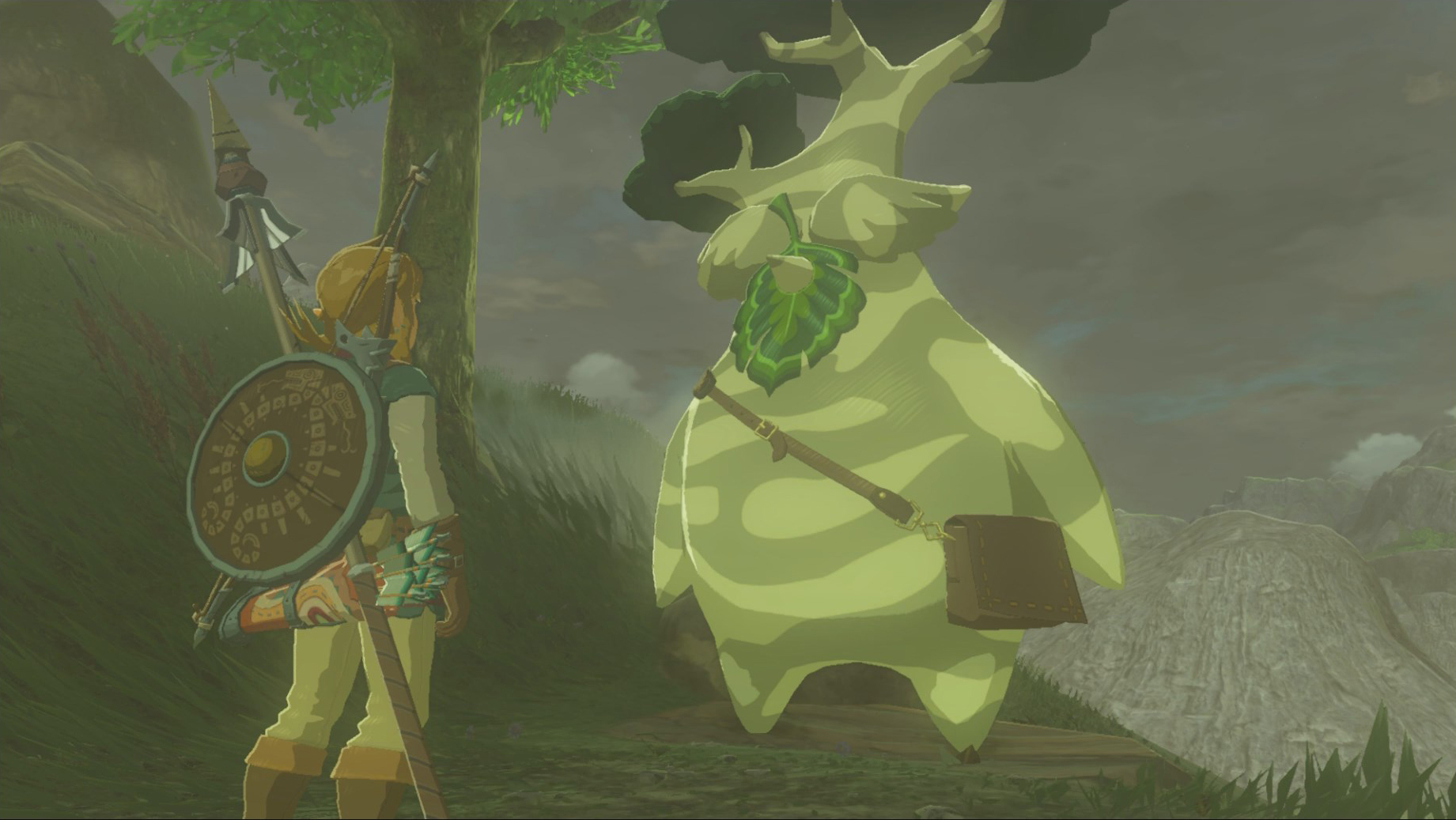 image relating to Printable Korok Seed Map known as Breath of the Wild Korok Seed Places - Zelda Dungeon