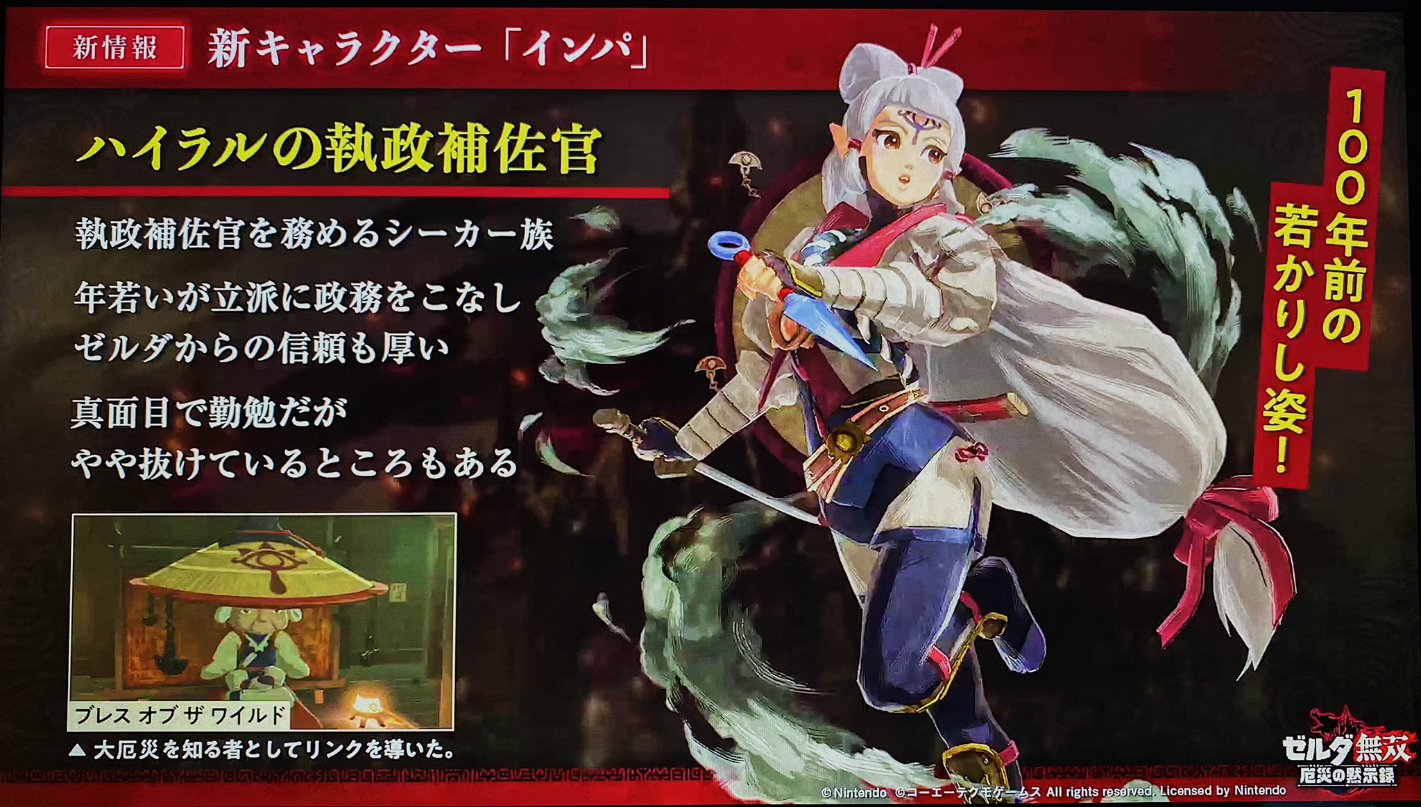 Young Impa Will Be A Playable Character In Hyrule Warriors Age Of Calamity Zelda Dungeon